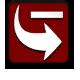 Icon skulk