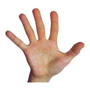 File:Spatulate hand.jpg