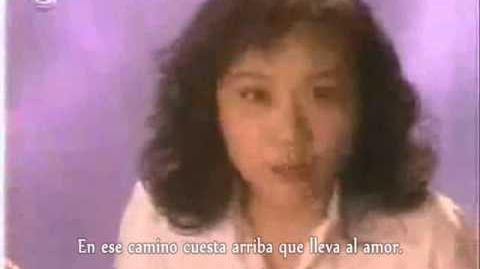 (Magic Knight Rayearth) Tamura Naomi - Yuzurenai negai Audio HQ sub español