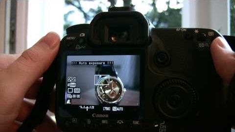 50D movie recording with Magic Lantern