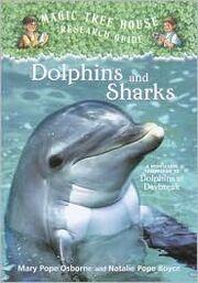 DolphinsAndSharks