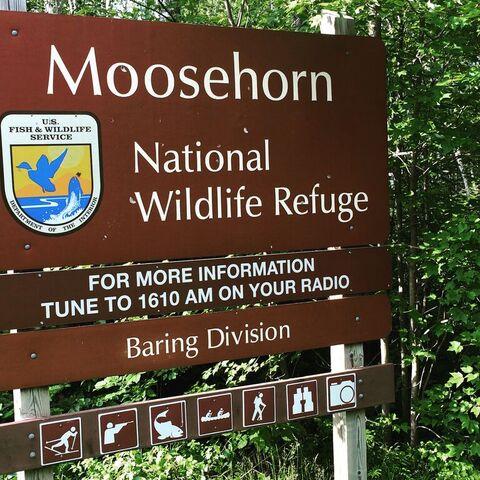File:Moosehorn.jpg