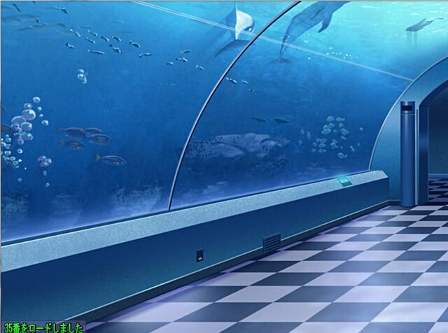 File:Aquaria.jpg