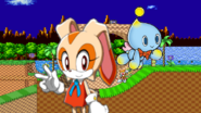 Project PS Zone Pair - Cream the Rabbit and Cheese the Chao
