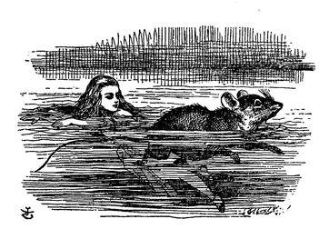 800px-De Alice's Abenteuer im Wunderland Carroll pic 08