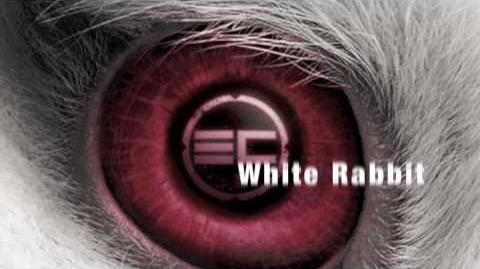Egypt Central - White Rabbit Lyrics