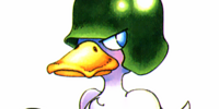 Duck GI