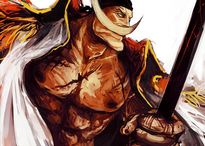 Whitebeard full 1110126