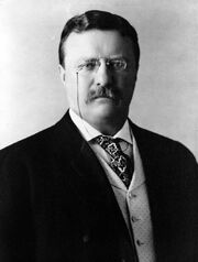 Theodore Roosevelt Large