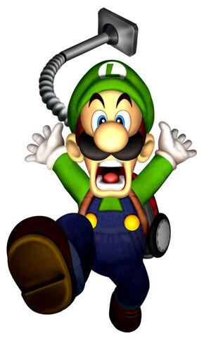 File:LM Luigi Flee.jpg