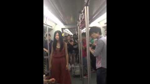N. Orentalis subway fight