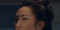 Jing Fei