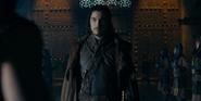 The Fellowship 15