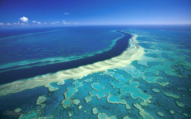 File:Great-barrier-reef-hardy.jpg