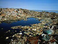 Alaska-garbage-dump-natgeo