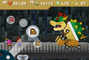 Battle With Bowser???