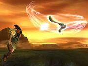 Gale boomerang