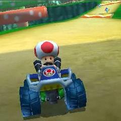 Toad driving on Wii Mushroom Gorge.