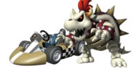 Dry Bowser Wii