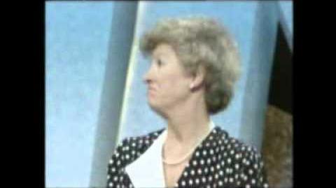 Family Fortunes (UK, 1987)