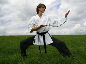 File:Karate-master.jpg