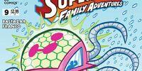 Superman Family Adventures Vol 1 9
