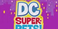 DC Super-Pets! (Shorts) Episode: World's Finest Bark