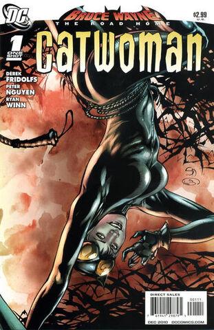 File:Bruce Wayne Road Home Catwoman 1.jpg