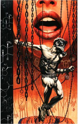 File:Y The Last Man Vol 1 5 Textless.jpg