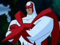 Hawk - DCAU