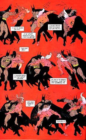 File:Batman 0481.jpg