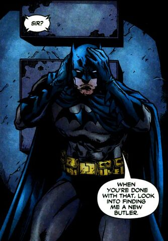 File:Batman 0596.jpg