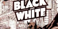 Batman: Black and White/Covers