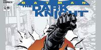 Batman: The Dark Knight Vol 2 0