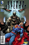 Batman Superman Vol 1 17