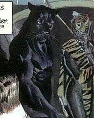 File:Wildcat Huntress Earth-22.png