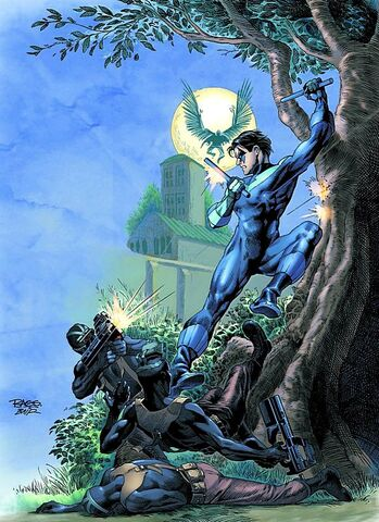 File:Nightwing 0067.jpg