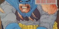Batman: The Dark Knight Returns Vol 1 2