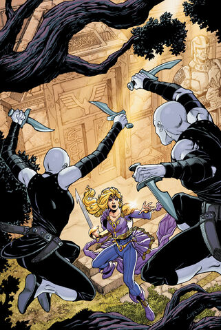 File:Sword of Sorcery Vol 2 5 Textless.jpg
