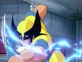 Wolverine Claws.jpg