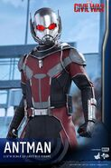 Ant-Man Civil War Hot Toys 12
