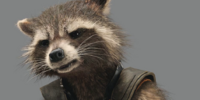 Rocket Raccoon/Quote