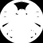 S.H.I.E.L.D. IDs Logo