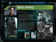 S.H.I.E.L.D. files Banner