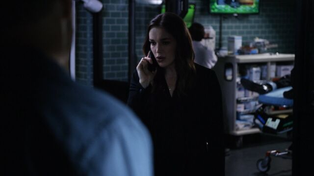 File:Simmons-4x03.jpg