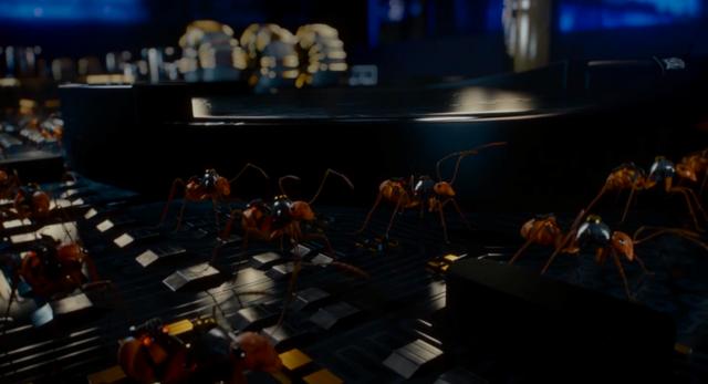File:Crazy Ants server 1.png