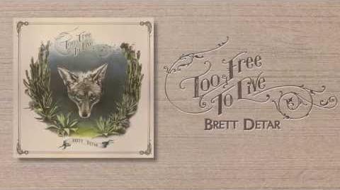 """Brett Detar - """"Damaged Girl"""""""