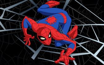 Spectacular-spiderman-animated
