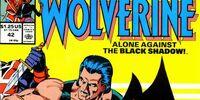 Marvel Comics Presents Vol 1 42