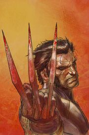 Wolverine Weapon X Vol 1 1 Textless.jpg
